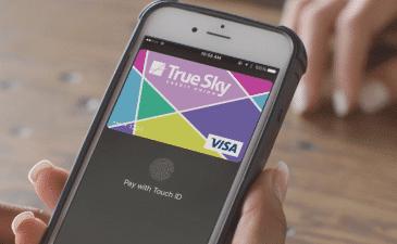 True Sky Credit Cards